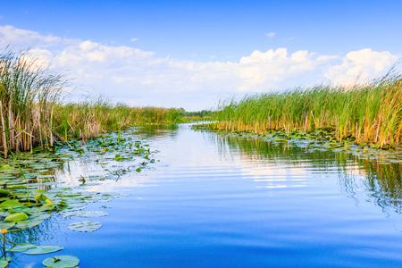 Danube Delta, Romania. Water channel in the Danube Delta with swamp vegetation. Stock Photo