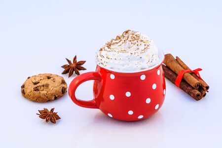 Hot chocolate with whipped cream, cinnamon, anise and biscuit.