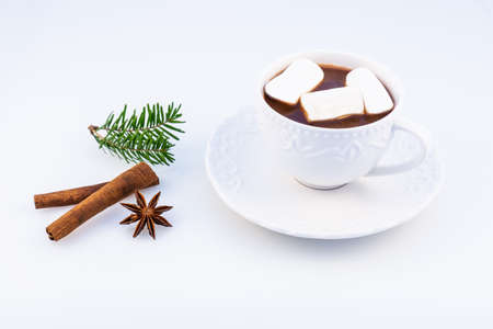 Hot chocolate with marshmallow, anasone, cinnamon  and Christmas tree branches on a white background, top view.