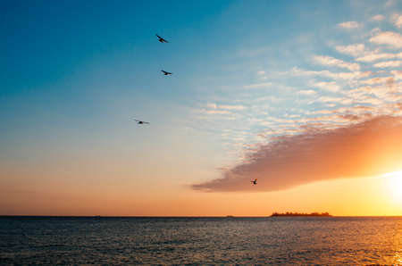 A breathless capture of the golden hour in Colonia Del Sacramento, Uruguay with a view to Rio De La Plata and birds flying over the clouds.