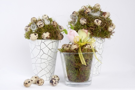 Easter decoration with pots with moss and quail eggs Stock Photo