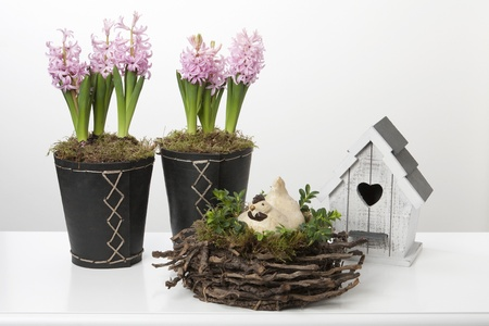 Spring decoration with hyacinths, a birdhouse and a chicken on a nest