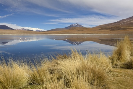 Reflection of mountains in a laguna with flamingos in South Lipez, Bolivia