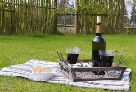 Bottle and two glasses of red wine on a tray in the garden Stock Photo