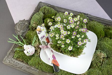 Beautiful green decoration with moss, flowers and tableware photo