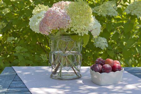 Bowl with plums and a vase with hydrangeas in the garden Stock Photo