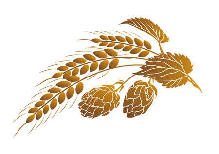 ホップと小麦の耳の Iillustration 写真素材