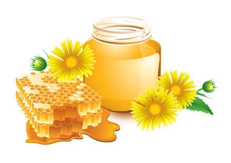 Illustration honey and honeycomb