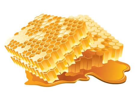 pot miel: Vector illustration de nid d'abeilles