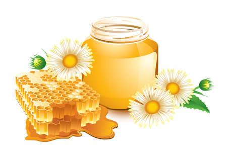 wesp: Vector illustratie van honing en honingraat Stock Illustratie