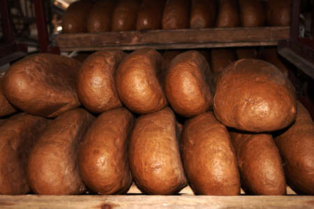 The bread in the bakery trays Stock Photo - 4648154