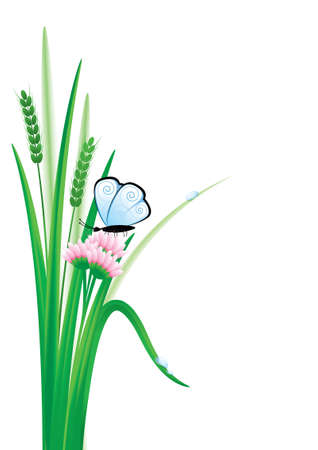 Vector illustration of green grass and a butterfly on a flower
