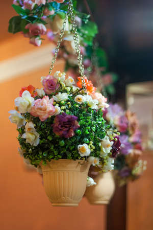 a hanging pot of flowers in interior Stock Photo
