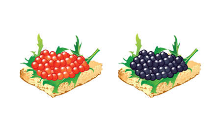 Vector canape with red and black caviar Illustration