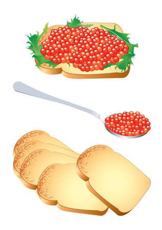 caviar: Vector illustration d'un sandwich et d'une cuill�re de caviar rouge