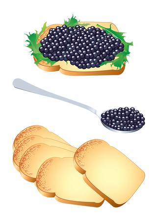 caviar: Vector illustration of a sandwich and a spoon with black caviar Illustration