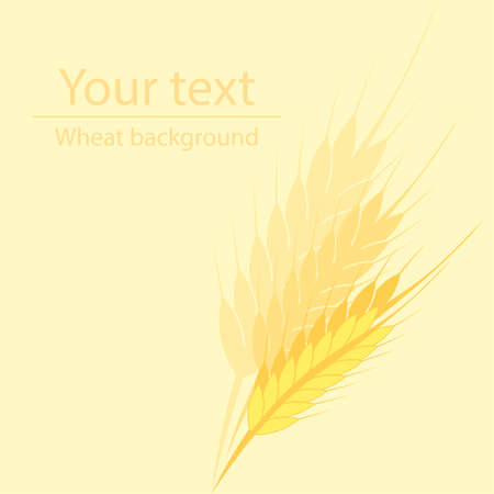 corny: yellow background for a label or a poster with a picture of wheat ears