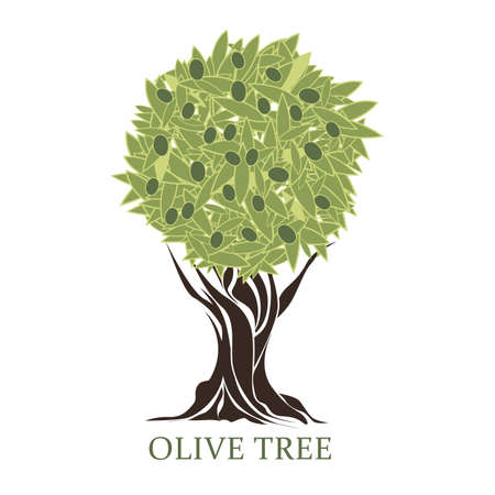 logo in the form of a stylized olive tree with olives