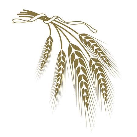 Ährchen von Weizen mit einem Band zusammengebunden Vektorgrafik