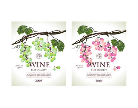 raceme: Set of conceptual labels for white and rose wine