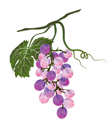 Bunch of grapes stylized polygonal Illustration