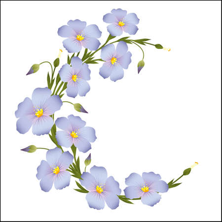 Wreath of flax flowers round ornament Illustration