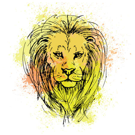Sketch by pen of a lion head  on a background of colored watercolor stains