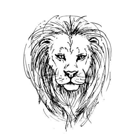 Croquis par stylo d'une tête de lion Banque d'images - 83060741