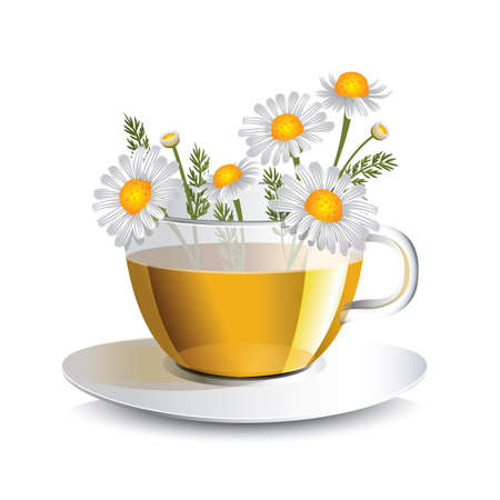 Vector illustration chamomile  tea in a transparent cup with flowers, a conceptual idea for the label