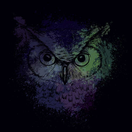 Head of an owl at night on a bright colored spots, a design for a T-shirt