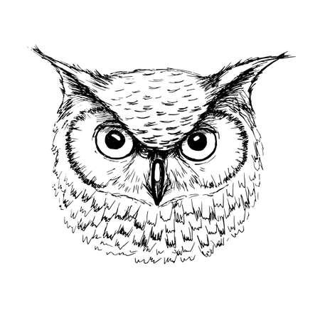 Sketch of owl head ballpoint pen