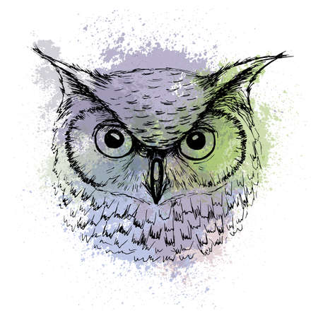 Sketch of owl head on  colored watercolor stains