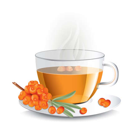 Sea buckthorn tea in transparent glass cup with haze, vector illustration for package design  Illustration