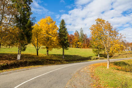 Curved road in the countryside on a bright sunny autumn day