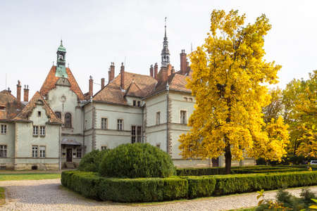 Brightly yellow autumn tulip tree in the park of the ancient Schoenborn Palace