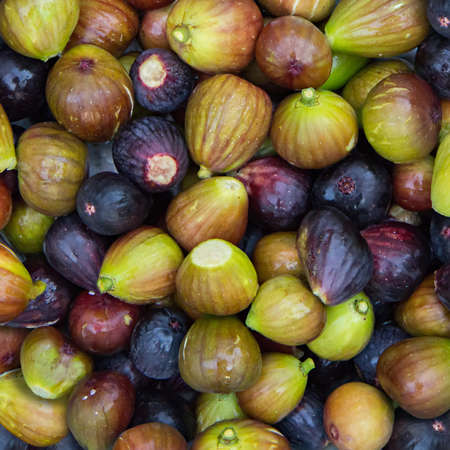 interspersed: Square background of figs of green and purple fruits