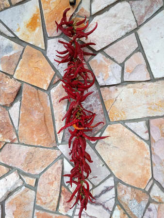 A bunch of red hot chili pepper on the background of a wall of decorative stone