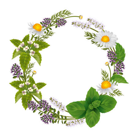 Round ornament of herbs and flowers for labels of herbal tea or herbal shampoo.