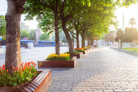 Early morning on Istanbul street during the Tulip Festival 写真素材