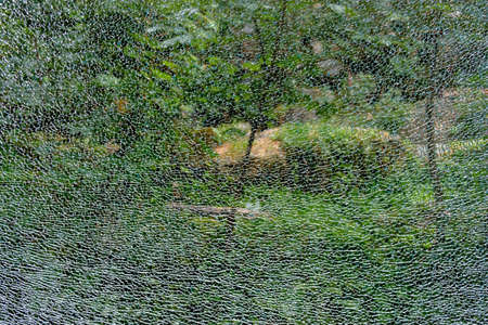 Abstract background, the texture of the broken armored glass on the background of the green forest
