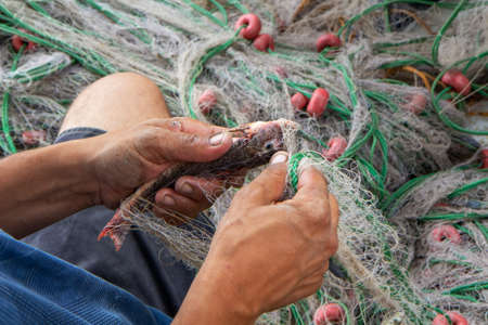 A sailor pulls out a goby fish from a fishing net