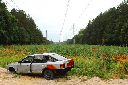 abandoned car: abandoned crashed car in the woods