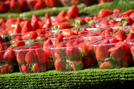 Abstract Colourfull Strawberries
