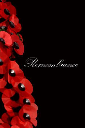 Remembrance Day Scene