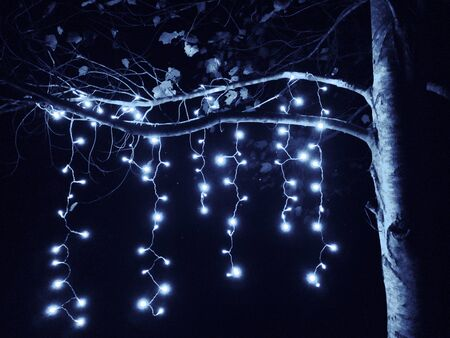 String of blue lights handing from tree limbs.