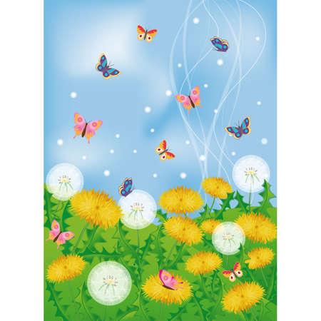 Butterflies and dandelions Stock Vector - 6546116