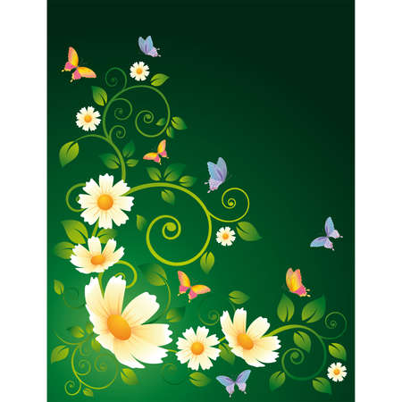 Flower background with camomiles and butterflies. Vector