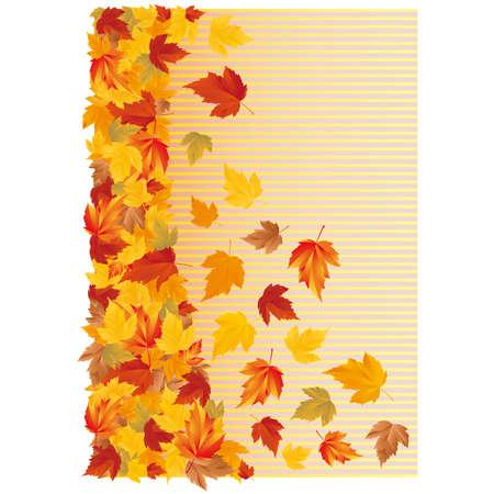 Autumn wallpaper.  Vector