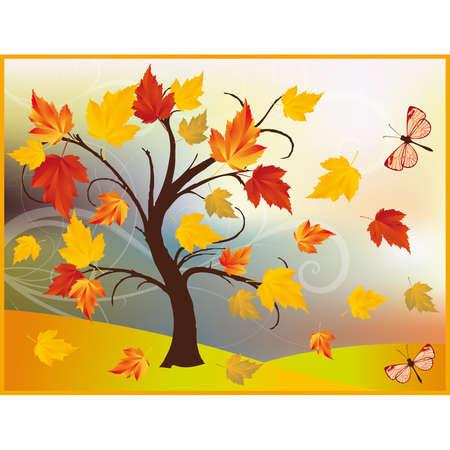 warm colors: Autumn maple tree