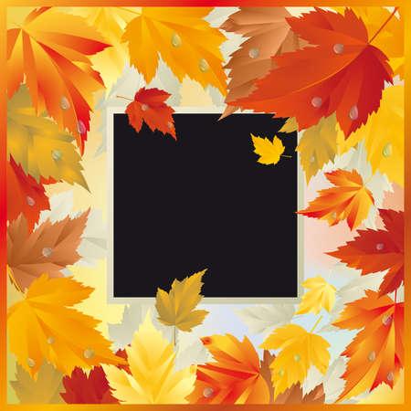 Autumn card with frame  Vector